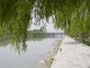 Zieleńce nad rzeką.