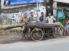 Chittagong, Saderghat i stary Chittagong. Sprzedawcy trzciny cukrowej.