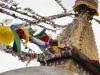 Kathmandu, Boudha, stupa Bodnath, flagi modlitewne.